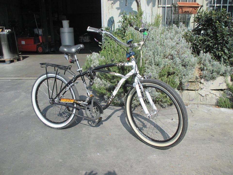 bici cruiser.jpg